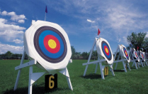 Catcher arrows. Target